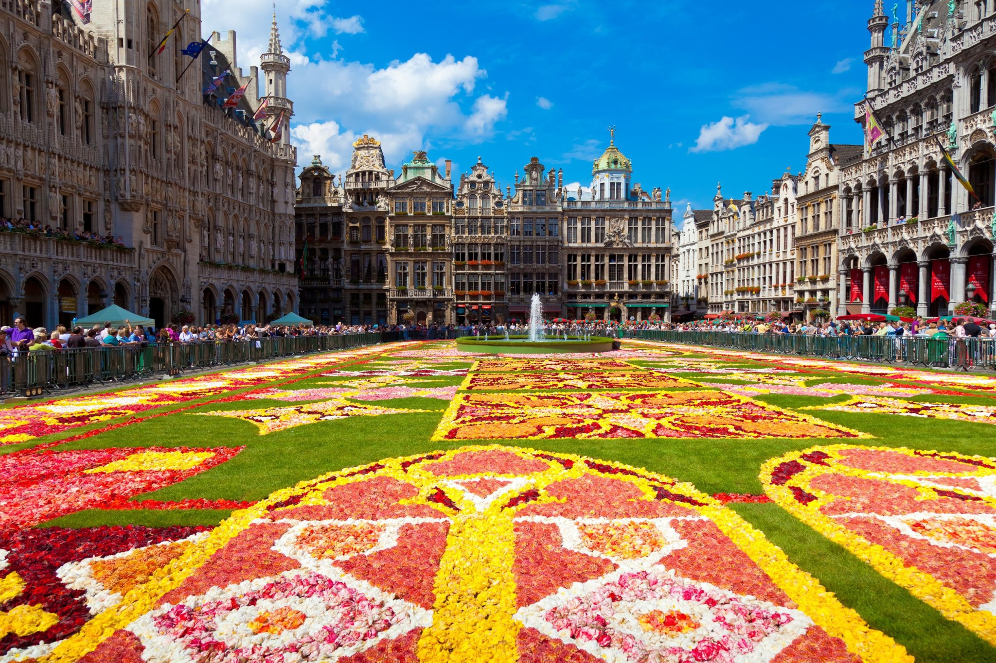 Floral carpet on the Grand Place Square, Brussels Belgium