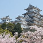 Himeji Castle during cherry blossom in Osaka, Japan