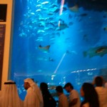 Top Ten Things To Do In Dubai, Karine Style